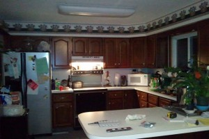 pic+1+kitchen