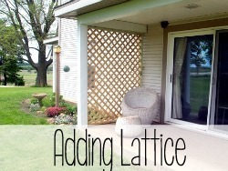 Build a Custom Trellis using pre-made lattice.