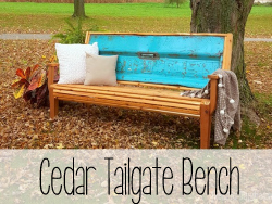 Chippy-Blue-Tailgate-Bench-with-Cedar-Slats-Reality-Daydream