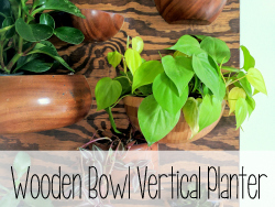 DIY Vertical Wooden Bowl Planter 'Living Wall' {Reality Daydream}