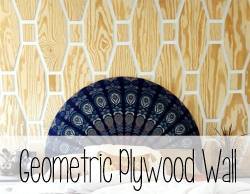 Geometric Plywood Wall