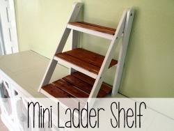 Mini Ladder Shelf