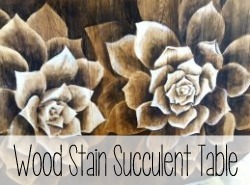 Shading with Wood Stain - Succulent Dining Table {Reality Daydream}