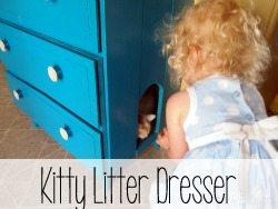 Transform an old little dresser into a secret spot for the kitty litter box!