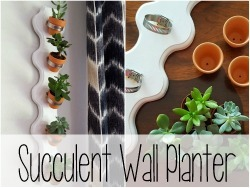 Vertical Wall Planter for succulents or herbs! {Sawdust and Embryos}