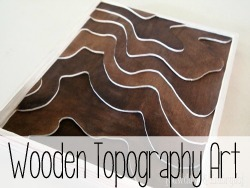 Wooden Topography Art... using the actual topography of your land!