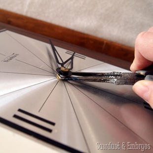 Repairing a broken clock {Sawdust and Embryos}