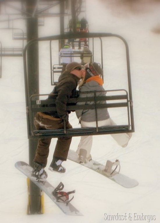 Snowboarding! {Sawdust and Embryos}