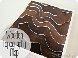 Wooden Topography Art