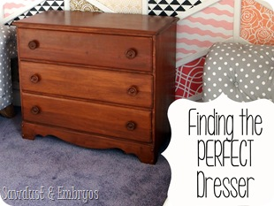 Finding the PERFECT Dresser! {Sawdust and Embryos}