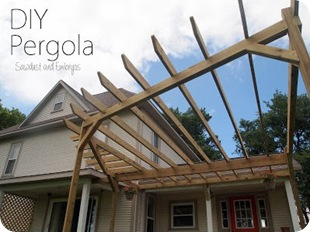 Building a Pergola {Sawdust and Embryos}