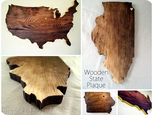 State and Country Plaques by Sawdust and Embryos