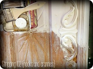 Stripping 102 ~ Nooks and Crannies {Sawdust and Embryos}
