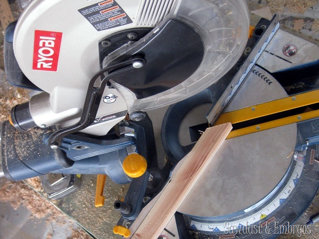 RYOBI {Sawdust and Embryos}