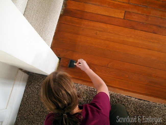 Sealing the hardwood floor patch {Sawdust and Embryos}