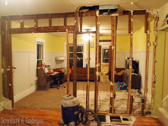 Tearing out the wall {Sawdust and Embryos}