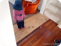 Before-replacing-floorboards-Sawdust-and-Embryos