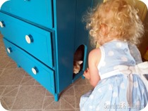 Dresser-with-kitty-door-for-hiding-the-litter-box-Sawdust-and-Embryos_thumb