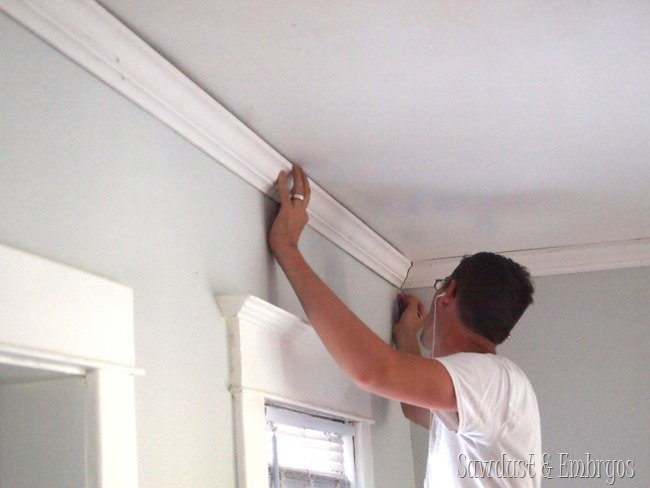 Installing Crown Moulding {Sawdust and Embryos}