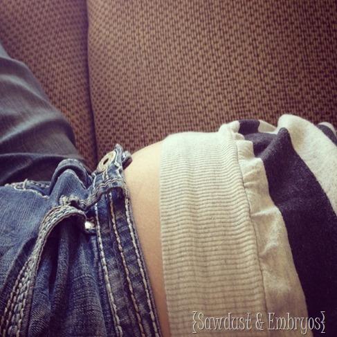 17 Week Baby Bump {Sawdust and Embryos}