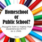 To Homeschool or Public School?
