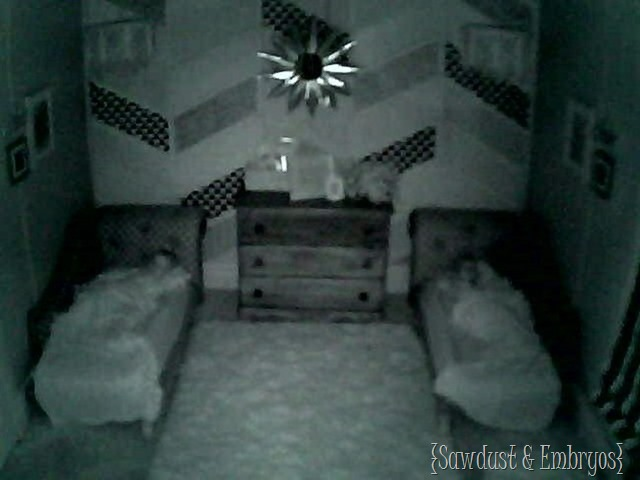 First night in the big-girl room {Sawdust and Embryos} (2)