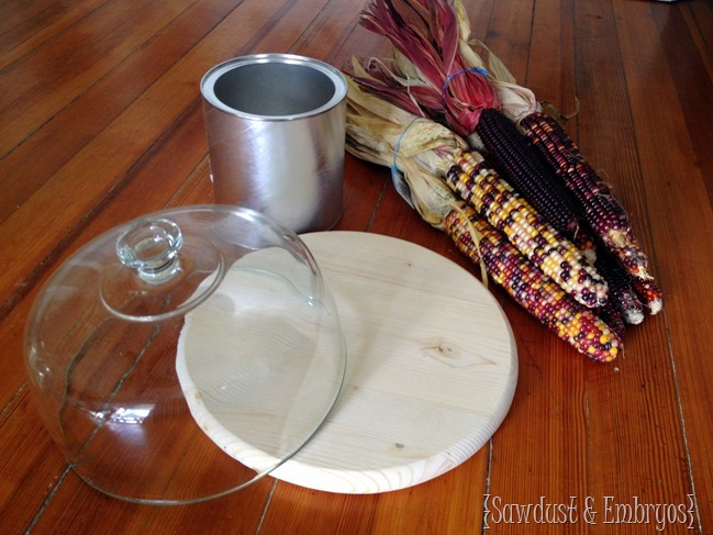 How to make a cute harvest-y cake stand! {Sawdust and Embryos}