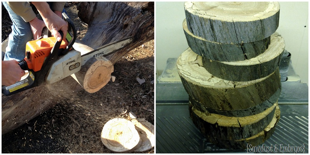 Cutting A Log : Wood disk table lamps wiring tutorial reality daydream