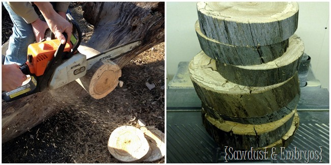 Cut a log into discs to make a wood-slice lamp! {Sawdust and Embryos}
