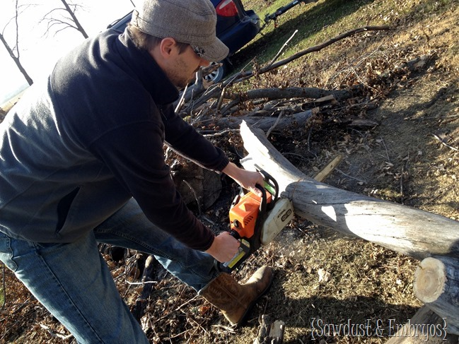 Natural wood-slab lamp tutorial! {Sawdust and Embryos}