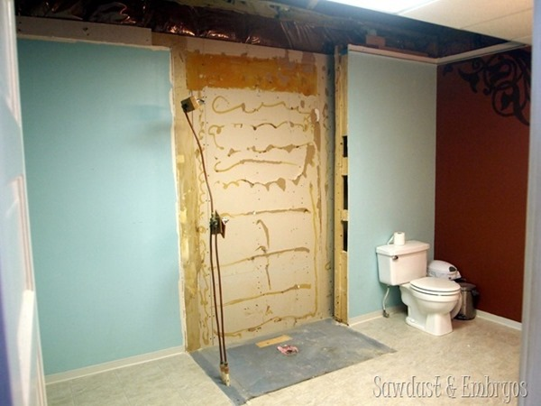 Removed-the-shower-Sawdust-and-Embryos_thumb