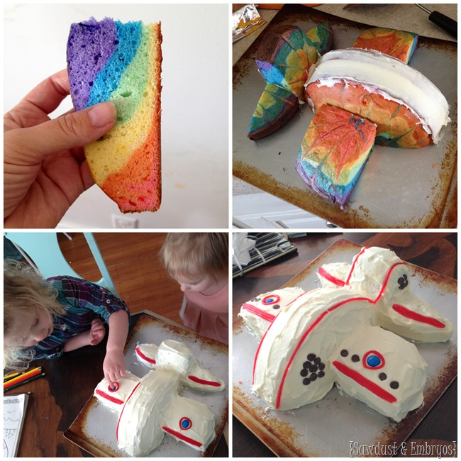 Simple Airplane-shaped Cake {Sawdust and Embryos}