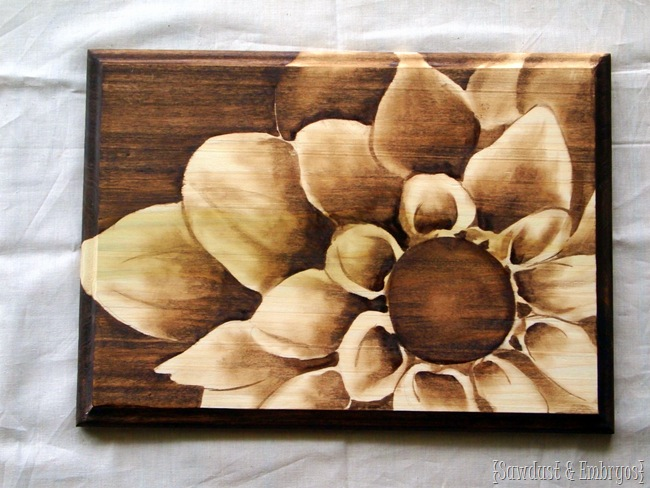 Shading with Stain {Sawdust and Embryos}