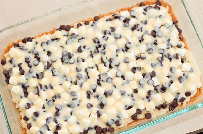 S'more Magic Bars (7)