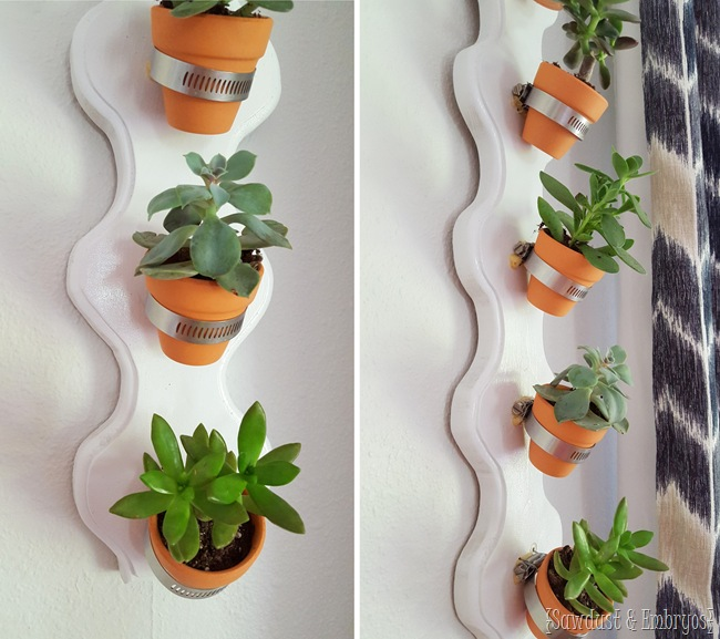 DIY Vertical Succulent Planter... so simple! {Sawdust and Embryos}