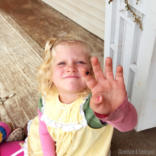Helping kids (and ourselves) overcome a fear of bugs {Sawdust and Embryos}