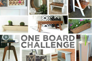One Board Challenge and Giveaway!