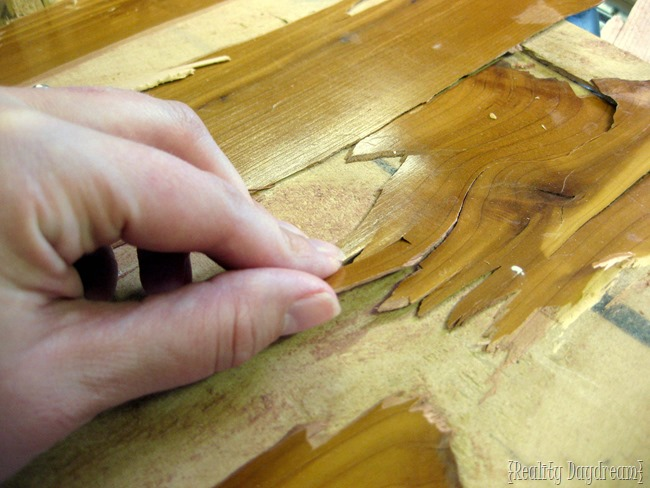 Wood veneer is VERY thin - this picture shows you just how thin the layer of hardwood veneer can be. {Reality Daydream}