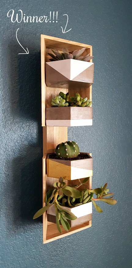 Wooden Trinket Box turned vertical wall planter sconce {Reality Daydream}