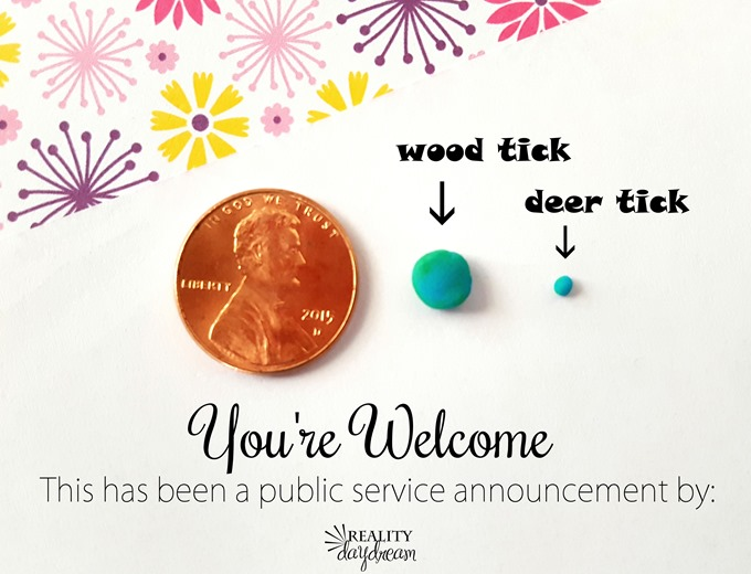Deer ticks are TINY! #lymedisease #themoreyouknow