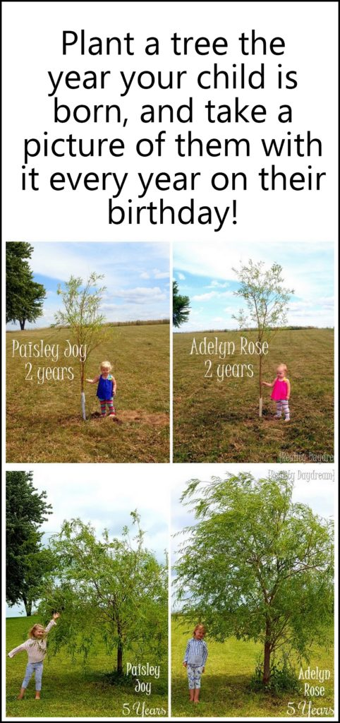 the-year-your-child-is-born-plant-a-tree-and-take-a-picture-of-them-with-it-every-year-on-their-birthday-its-so-fun-to-see-how-they-both-grow-each-year-reality-daydream