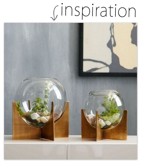 Cross-Base Terrariums by West Elm