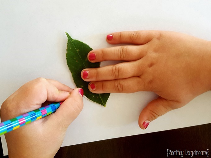 Kids nature craft using leaves, glue, and watercolor paint! {Reality Daydream}
