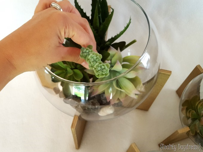 Make a Cross Base Terrarium with FAKE Succulents! {Reality Daydream}