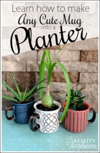 Learn-how-to-make-a-cute-mug-or-just-about-ANYTHING-into-a-planter-pot-by-drilling-drainage-hole-1