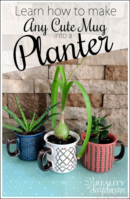 Learn how to make a cute mug (or just about ANYTHING) into a planter pot by drilling drainage holes with a DIamon Bit! {Reality Daydream}