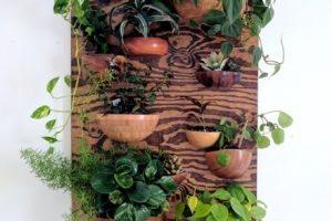 Living Wall Vertical Planter from Wooden Bowls