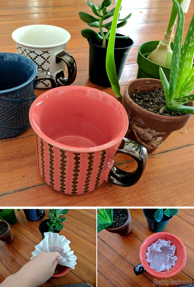 Turn ordinary mugs into planters or 'planting pots' by drilling a hole in the bottom with a Diamond Bit {Reality Daydream}