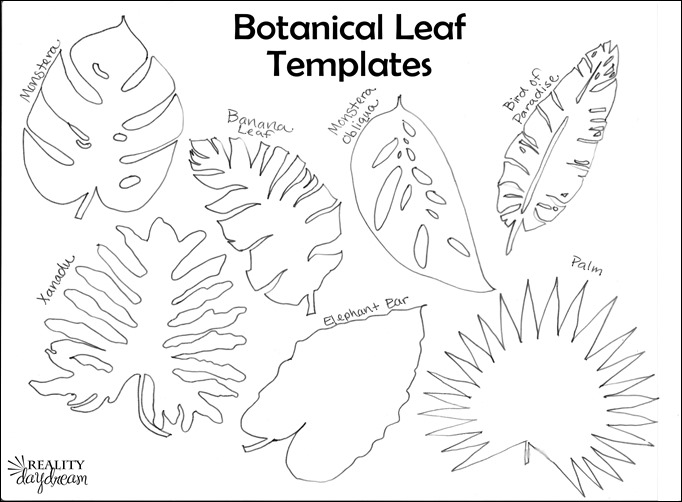 Botanical leaf templates for plant trivets... Monstera, Banana Leaf, Bird of Paradise, Palm, Elephant Ear, and Xanadu {Reality Daydream}