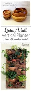 Make-this-Living-Wall-Vertical-Planter-our-of-wooden-bowls...-CUT-IN-HALF-Click-through-for-the-